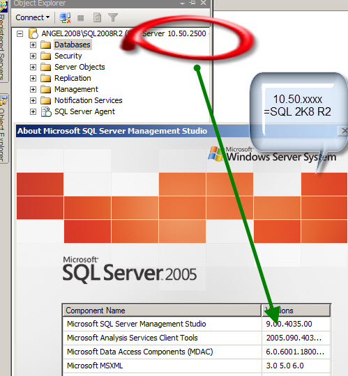 Microsoft sql server 2008 bi development studio, vascular access ...